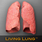 Living Lung